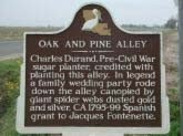A Louisiana historical marker identifies the largest portion of the still-intact alley of trees.