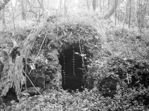The artificial grotto lurks beneath the Louisiana jungle.